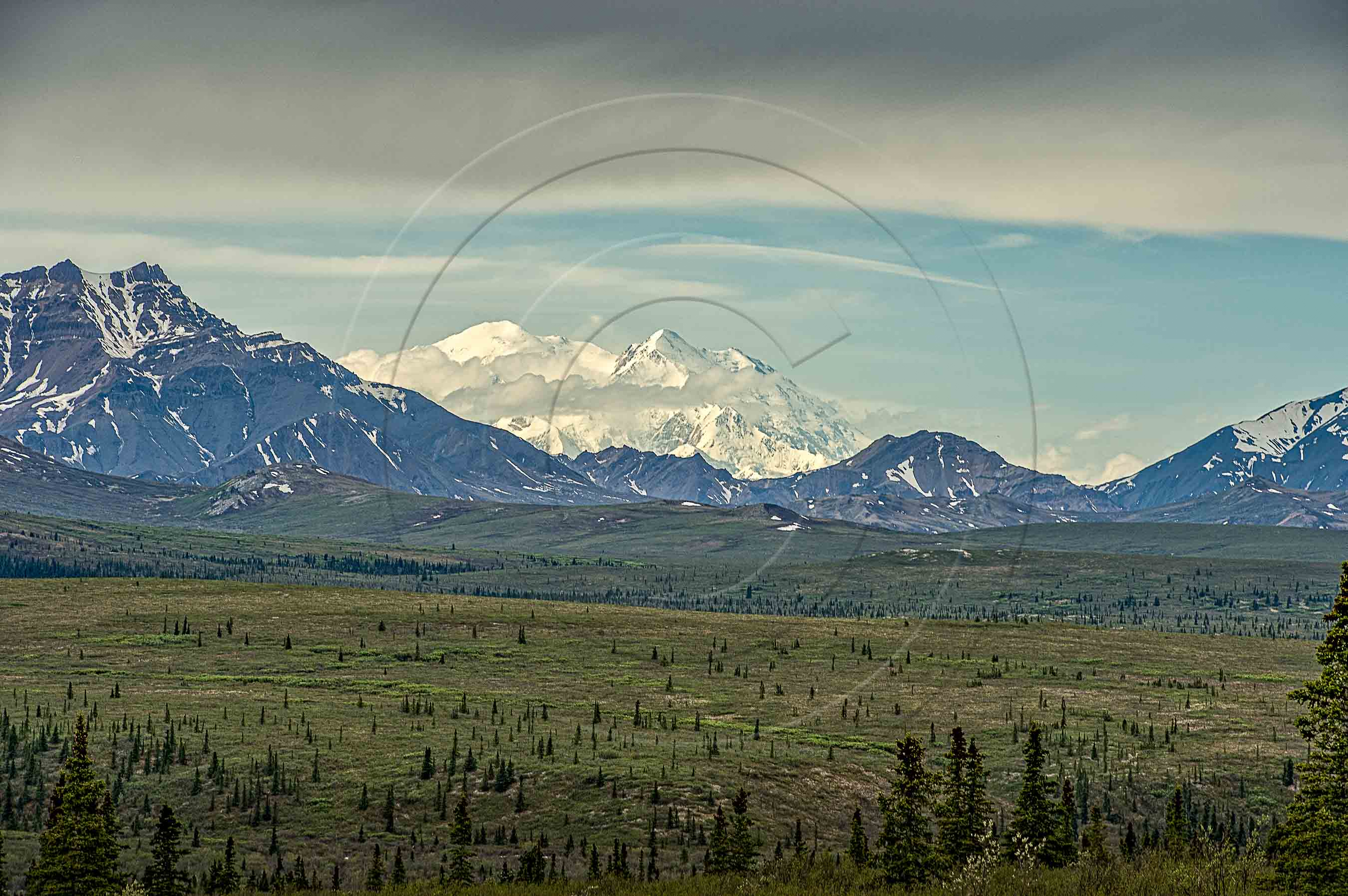 MOUNT DENALI (1 of 1)